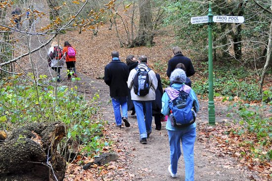 Green London - Day Tours: In Highgate Woods
