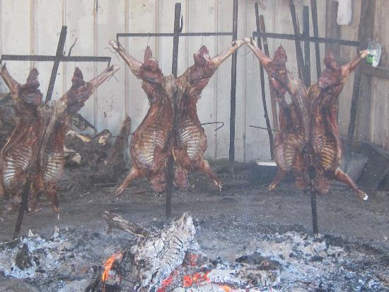 Channel of Last Hope (Ultima Esperanza): our lamb barbecue at the estancia