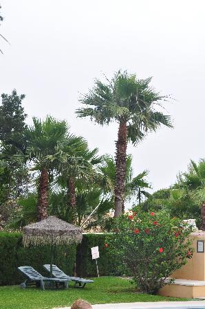 El Porton: garden 1