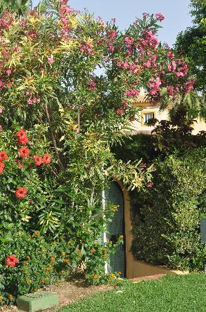 El Porton: small enter from street to the garden