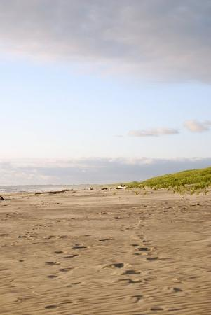Gearhart, Oregón: The unforgettable beach just blocks away from the cottage.