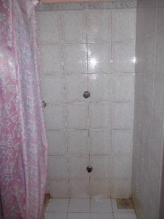 Full Moon Garden Hotel: Not So Clean Shower Stall And Curtain