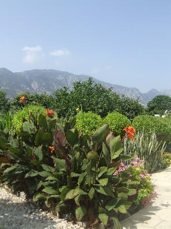 Almond Holiday Village: The garden at rear of the Villa