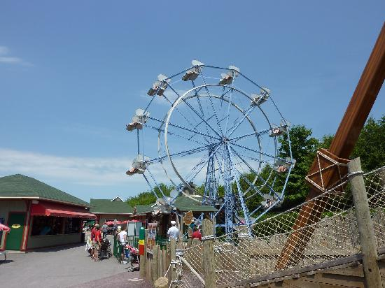 Granby Zoo (Zoo de Granby): Ferris wheel in the rides section