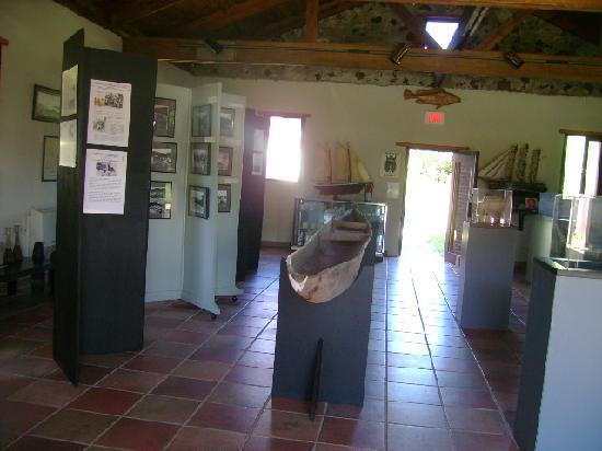 Museum of History: Interior: Objetos arqueológicos y tarjetas informativas
