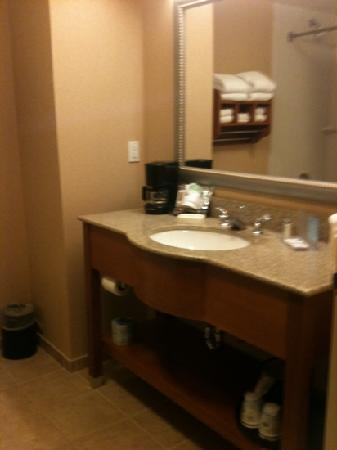 Hampton Inn Ellensburg: Bathroom