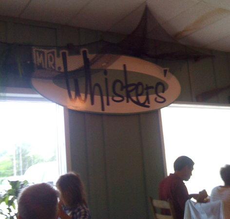 Mr. Whiskers: Interior shot