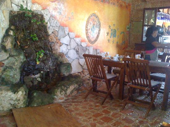 Maison Tulum: common area