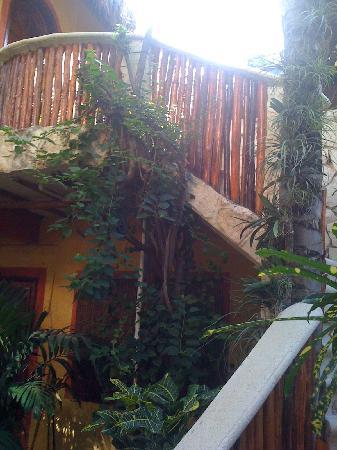Maison Tulum: garden