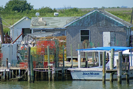Tangier Island, VA: More of the crabbing industry