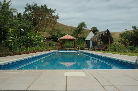 Palmlea Farms: The Pool