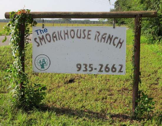 I loved the animals here at the Smoakhouse Ranch