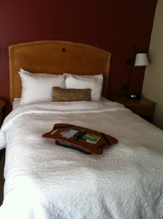 Hampton Inn Cedar City: single queen bed