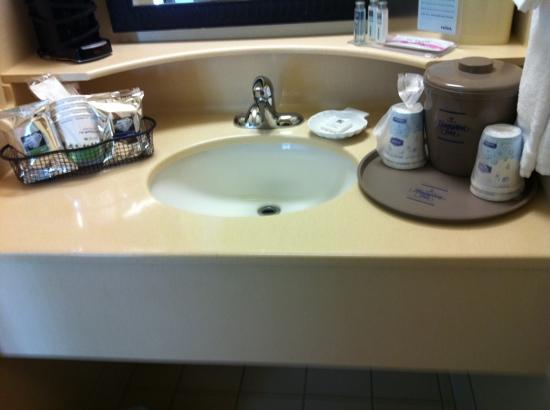 Hampton Inn Cedar City: sink