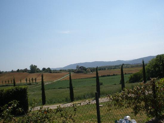 Borgo La Chiusa : Cypress trees at the Villa