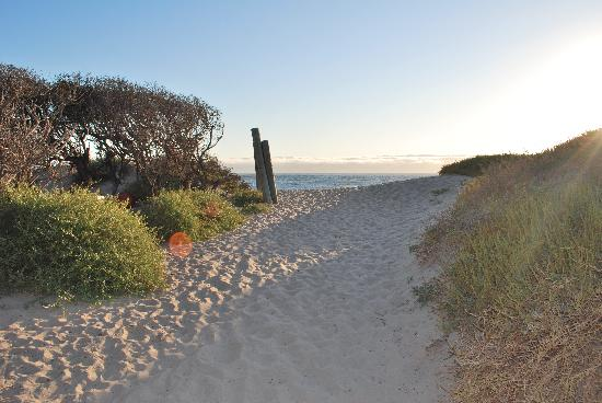 Jalama Beach County Park: path onto the beach