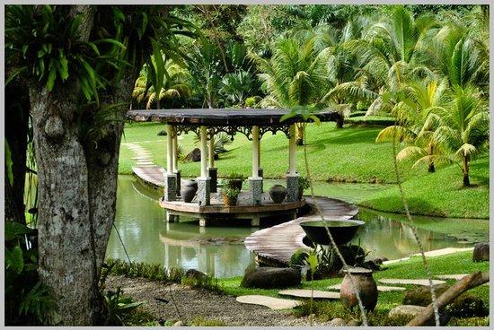 Babatngon, Filipiny: San Rafael's Farm