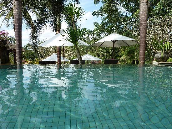 Bunga Permai Hotel: der pool