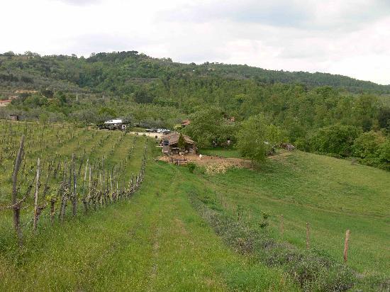 Azienda Agricola Cimbolello: top view