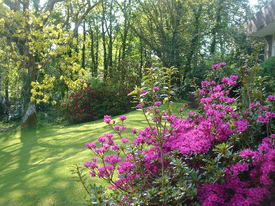 Lanteglos Country House Hotel: Lovely gardens