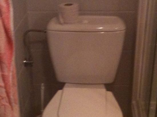 Bella: Toilettenpapier