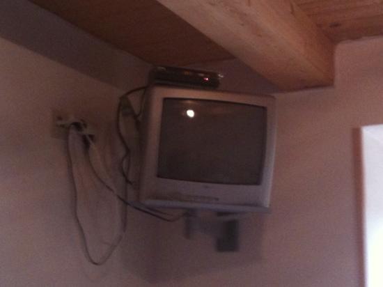 Bella: TV