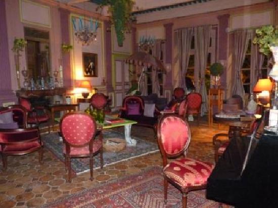 Hotel de Digoine: Un salon de l'hôtel