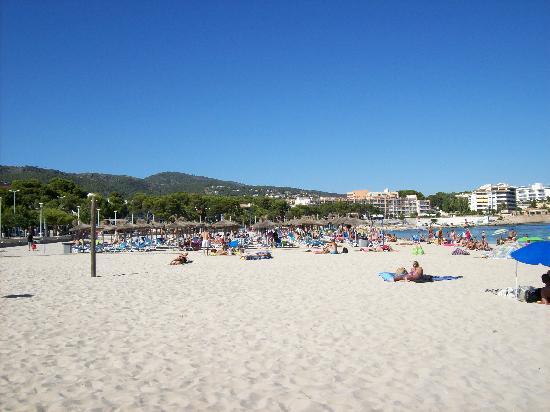 Hotel Agua Beach: La spiaggia di fronte all'hotel
