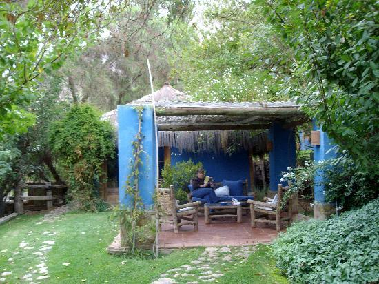 Pisco Elqui, Cile: View of our Cabana with patio