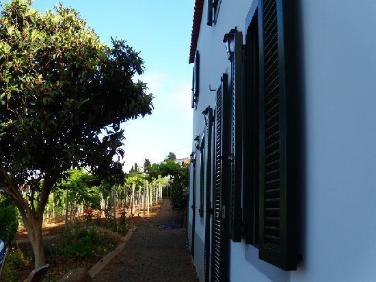 كينتا داس فيناس: Our Cottage, Quinta das Vinhas, June/July 2011