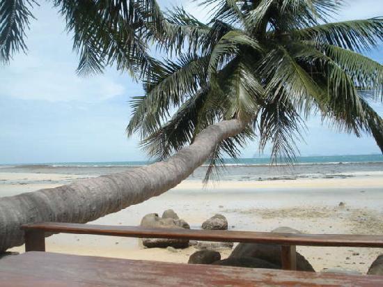 Ko Phangan, Tayland: Einfach ohne worte