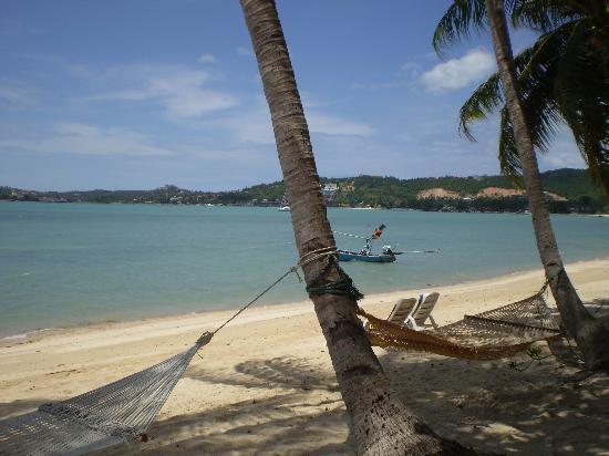 Como Resort Koh Samui: Het strand