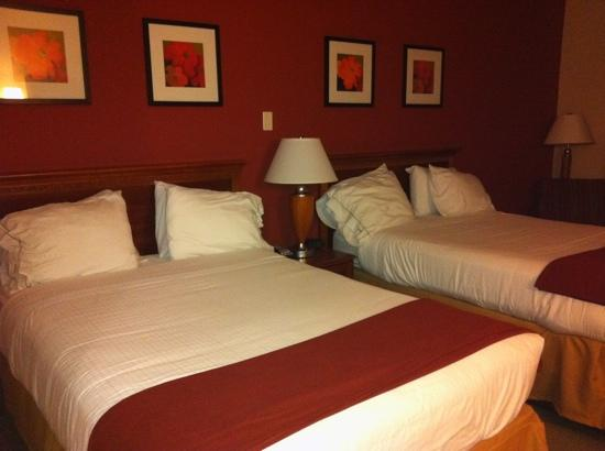 Holiday Inn Express & Suites Manchester-Conf Ctr (Tullahoma): bedroom