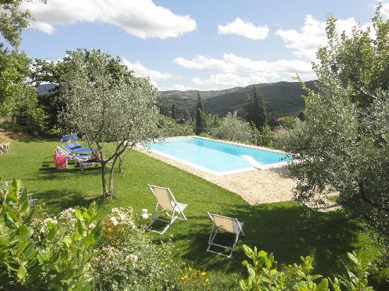 Podere Campriano: View of the pool