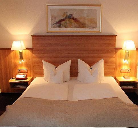 Hotel Neckarblick: Hotelzimmer Barbarossa