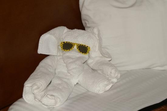 Best Western Sunset Inn: The little towel elephant welcoming us.