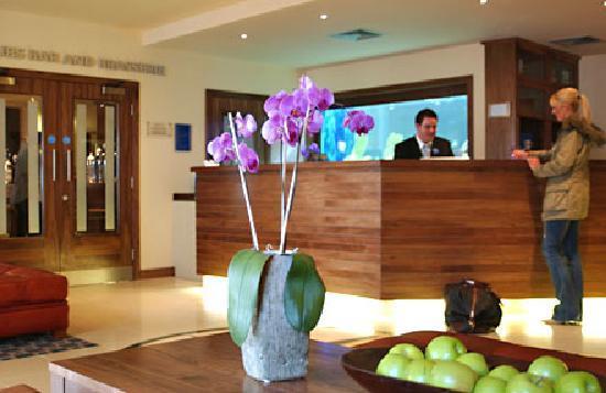Big Blue Hotel: Lobby / Reception