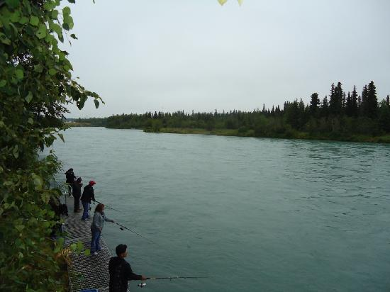 Alaska Fishing Lodge - Soldotna Bed and Breakfast Lodge: River & walkway