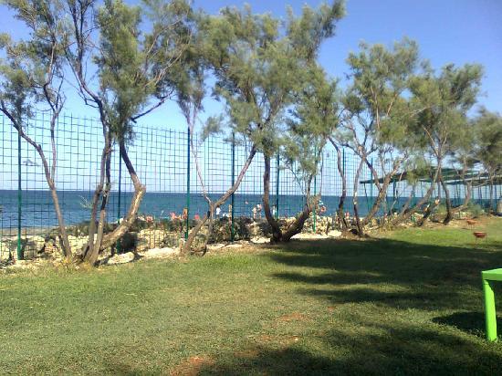 Villaggio MareNeve Torre Cintola : Vista mare dal nuovo solarium prato