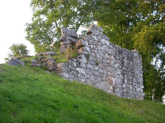 Toftaholm Herrgard Hotel: Ruins on the Island