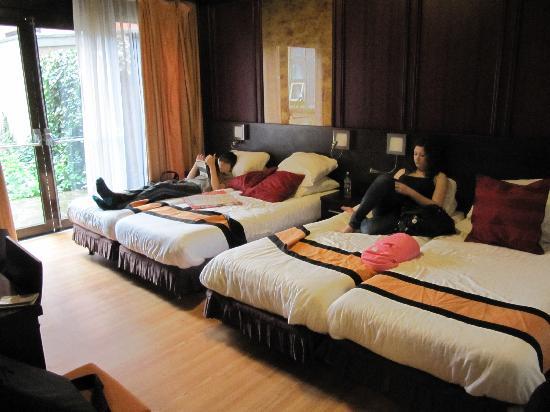 Falcon Plaza Hotel: Room