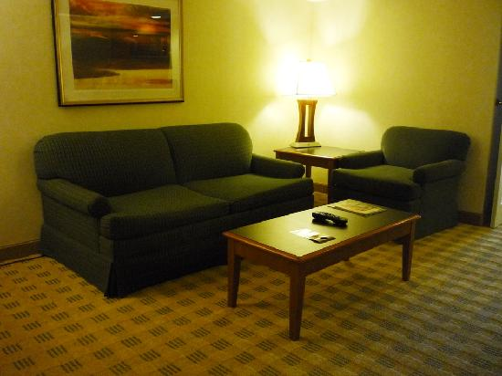 Doubletree Suites by Hilton Hotel & Conference Center Chicago / Downers Grove: Sitting area - check out the carpet pattern