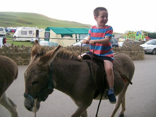 Freshwater Beach Holiday Park: josh enjoying donkey ride