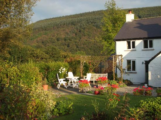 Ty'r Cae Bed and Breakfast: Ty'r Cae and garden