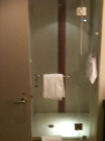 Harrah's Cherokee Casino Resort: Fabulous Shower- sorry it's blurry!