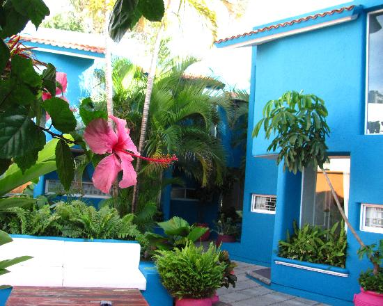 Villas Las Anclas: The plantings are exceptional