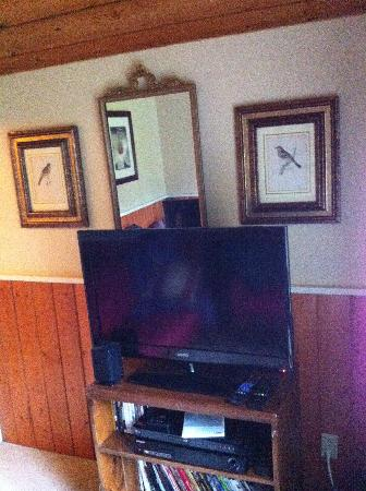 Kangaroo House Bed & Breakfast on Orcas Island: Northern Flicker sitting room tv