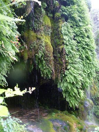 Payson, AZ: the little waterfall