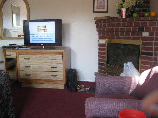 Svendsgaard's Lodge - Americas Best Value Inn: fireplace, flat screen tv