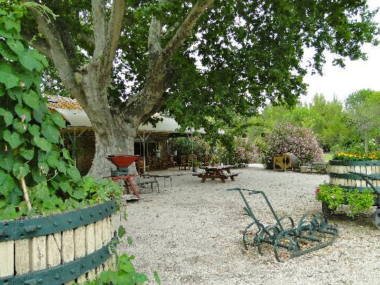 Le Mas des Vertes Rives: the yard